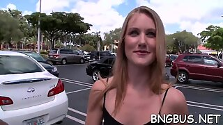 Bangbus porn tube